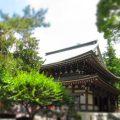 北鎌倉◆円覚寺◆御朱印めぐりの旅1&紫陽花