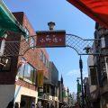 鎌倉小町通りの◆鎌倉茶々◆お茶屋さんが作ったとっても濃いソフトクリームを食べてみた!この色見て見て!!