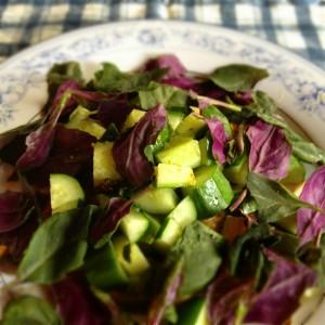 水前寺菜のサラダ